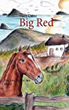img - for Big Red (German Edition) book / textbook / text book