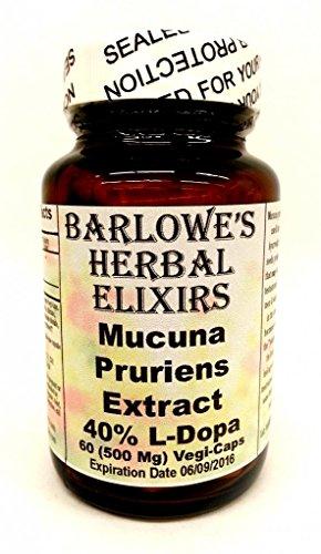 Mucuna Pruriens Extract - 40% L-Dopa - 60 500Mg Vegicaps - Stearate Free, Bottled In Glass