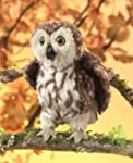 Folkmanis Saw-whet Owl