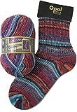 Opal Sock Yarn Gallery 8882 Fluttering Evening Dress