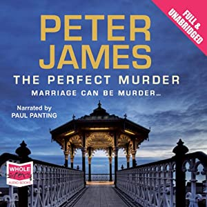 The Perfect Murder Audiobook