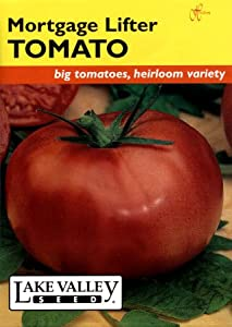 Lake Valley 1973 Tomato Pole Mortgage Lifter Heirloom Seed Packet