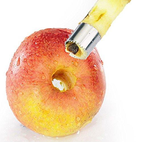 herramienta-kithcen-20mm-fruta-del-acero-inoxidable-noecleo-de-siembra-removedor-descorazonador-de-m