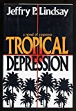 img - for Tropical Depression: A Novel of Suspense by Lindsay, Jeffrey P.(July 29, 1994) Hardcover book / textbook / text book