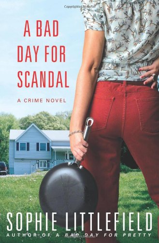 Image of A Bad Day for Scandal: A Crime Novel (Stella Hardesty Crime Novels)