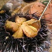 殻付きムラサキウニ(白身) 1個200g前後-10個前後-2kg