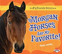 Morgan Horses Are My Favorite! (My Favorite Horses)