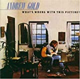 Andrew Gold What's Wrong With This Picture