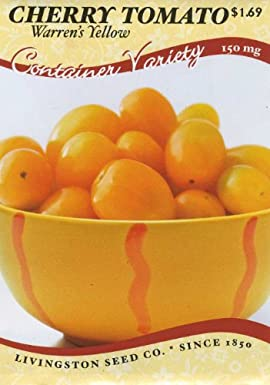 Tomato - Warren's Yellow Cherry