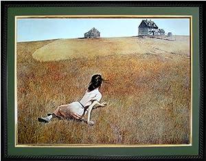 Amazon Com Christina S World Art By Andrew Wyeth Girl On