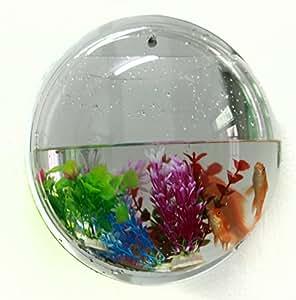 Microtimes wall hanging mount bubble aquarium for Fish bowl amazon