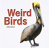 Weird Birds