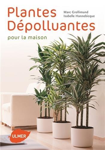 plantes-depolluantes-pour-la-maison