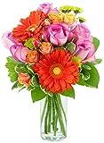 KaBloom Bouquet of Orange Gerbera Daisies, Pink Roses, Orange Spray Roses and Lush Greens - With Vase