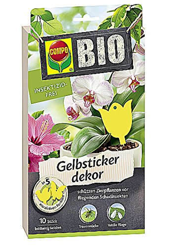 compo-jaune-stickers-decor-10-pieces-cbio-gs