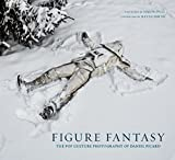img - for Figure Fantasy: The Pop Culture Photography of Daniel Picard book / textbook / text book