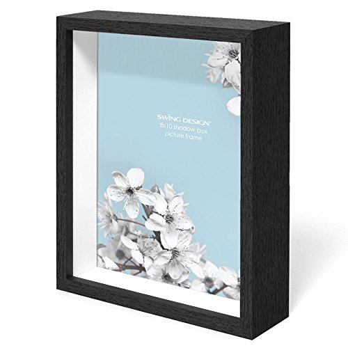 Swing Design Chorma Picture Frame and Shadow Box, 8 x 10
