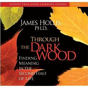 Through the Dark Wood - James Hollis