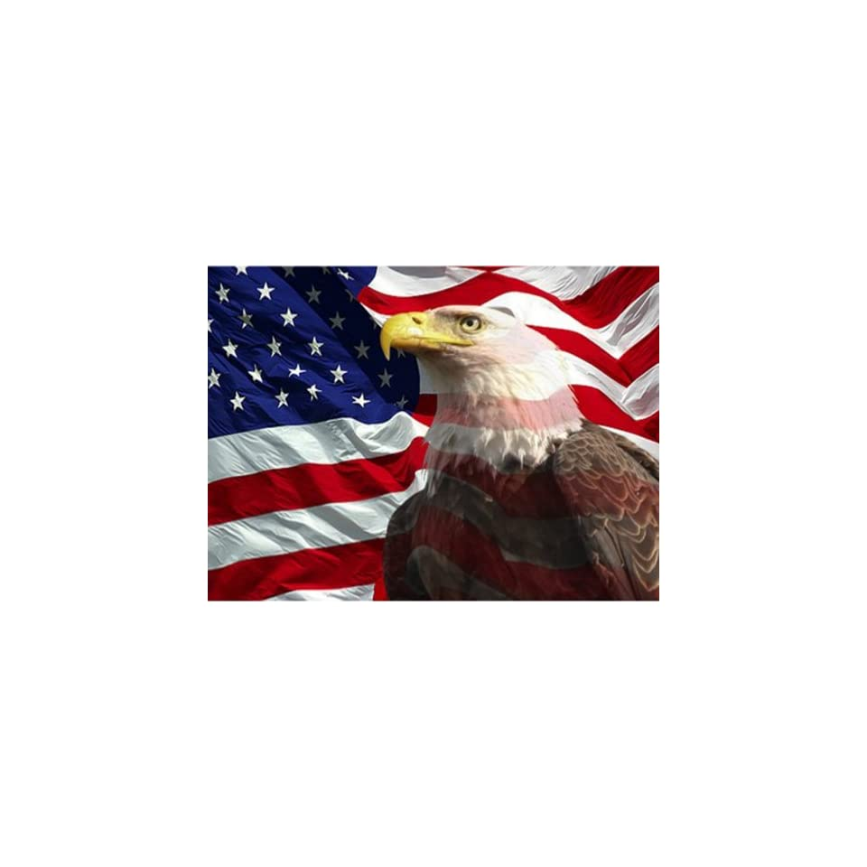 Eagle with American Flag 1 Counted Cross Stitch Pattern Booklet