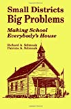 img - for Small Districts, Big Problems: Making School Everybody's House (Wiley Series in Probability and) book / textbook / text book