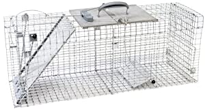 Havahart 1092 Collapsible One-Door Easy Set Live Animal Cage Trap for Raccoons, Stray Cats, Groundhogs, Opossums, and Armadillos