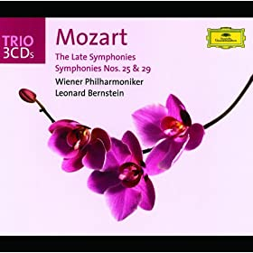 Mozart: Symphony No.25 in G Minor, K. 173dB (K.183) USE KV183/y25 - Andante