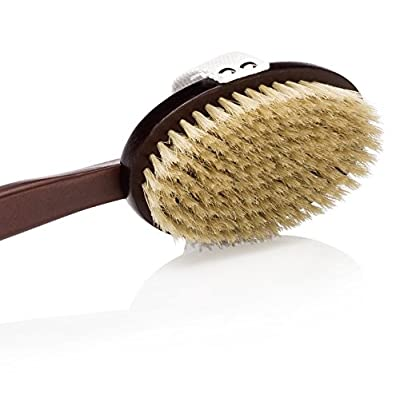 Deluxe Natural Dry Body Brush for Overall Skin Wellness. Restore Youthful Glow. Removable Long Handle, Storage Bag & FREE B.O.N Nourishing Skin Oil