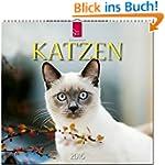 Katzen 2016: Original St�rtz-Kalender...