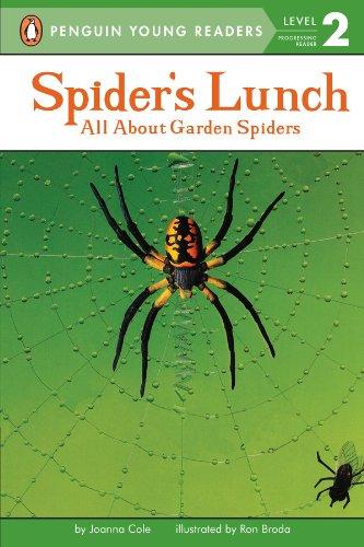 Buy Spiders Garden Now!