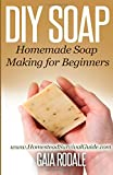 img - for DIY Soap: Homemade Soap Making for Beginners (Sustainable Living & Homestead Survival Series) book / textbook / text book