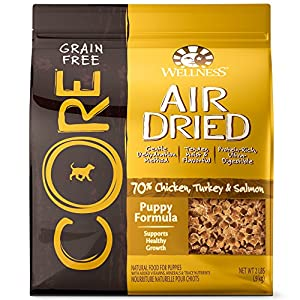 Wellness Core Air Dried Grain Free Natural Dry Dog Food, Chicken, Turkey and Salmon, 2 Pound