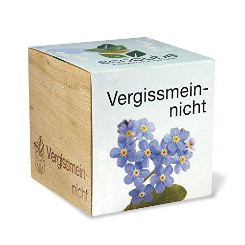 Extragifts ecocube Non ti scordar di me - piante nel cubo di legno