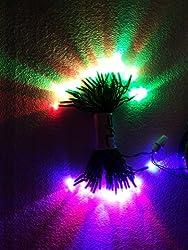 MAKE IN INDIA Multi Colour 13 meter LED Rice lights Serial LED decoration light for diwali navratra christmas