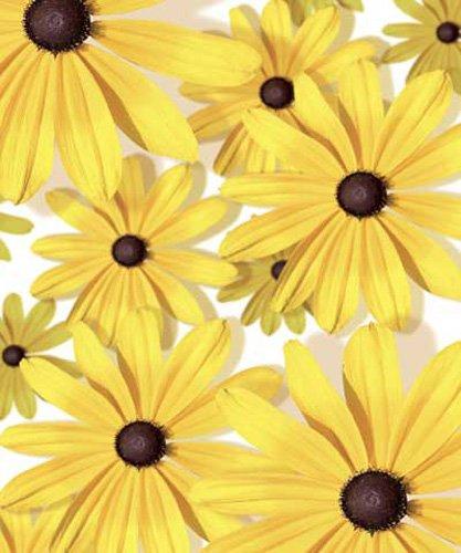 Blumentapete - DVD Geschenkhülle - Blu-ray DVD-Verpackung Pappschachtel