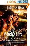 Witch's Fire (Winslow Witches of Salem Book 5)