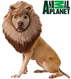 California Costume Collections Animal Planet Lion Dog Costume, X-Small