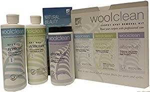 Wool Clean Carpet Spot Removal Kit