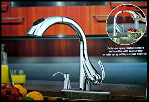 Water Ridge Pull Down Kitchen Faucet 205674