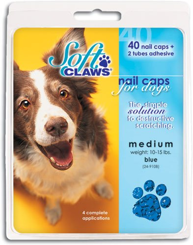 Soft Claws Dog And Cat Nail Caps Take Home Kit, X-Large, Blue front-601557