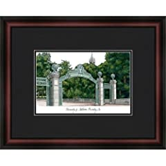 Cal Berkeley Golden Bears Framed & Matted Campus Picture by Landmark Publishing