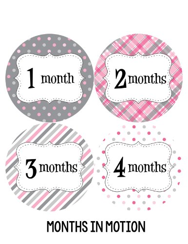 Months in Motion 213 Monthly Baby Stickers Baby Girl Months 1-12 Milestone Sticker in Pink Grey