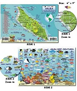 Aruba Reef Creatures Fish ID for Scuba Divers and Snorkelers