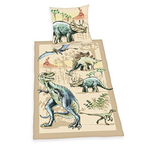 Herding-4451007050-Young-Collection-Parure-de-Lit-pour-Enfant-avec-Imprim-Dinosaure-en-Coton-Multicolore-135-x-200-cm
