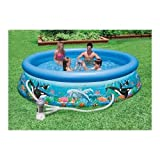 Intex 10-Foot by 30-Inch Ocean Reef Easy Set Pool