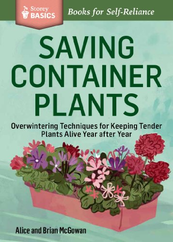 saving-container-plants-storey-basics