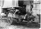 8x12 inch Photographic Print from a high-quality scan of the original.Title: Fruit vender's [sic] cart, Havana, Cuba Date Created/Published: c1904. Notes: Copyright by Detroit Photographic Company.No. 09214.Subjects: Fruit--1900-1910. Food ve...