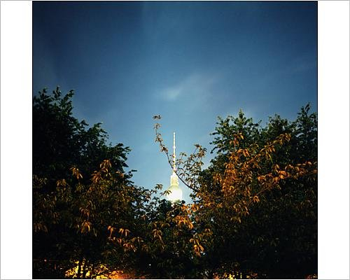 photographic-print-of-berlin-television-tower-and-trees-berlin-germany