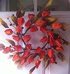 Colorful Chinese Lantern Fall Wreath Or Autumn Centerpiece 14 Inch