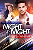 img - for Night By Night: A Sexy And Uplifting Black Woman White Man Romance book / textbook / text book