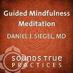 Guided Mindfulness Meditation | Daniel J. Siegel